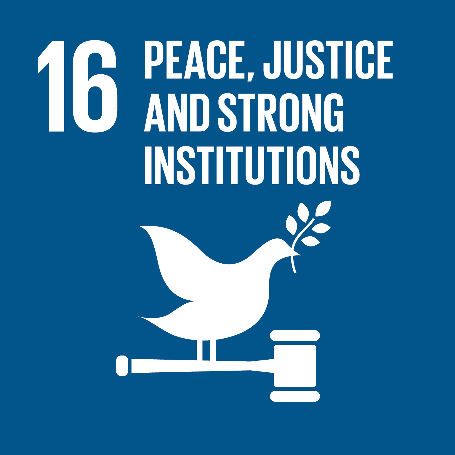 GOAL 16: Peace and Justice Strong Institutions